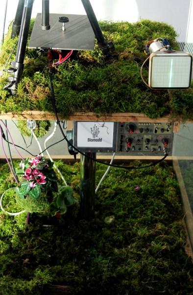 biomodd-london-tedx-2013